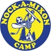 Camp Nock-A-Mixon Nursing Opportunity